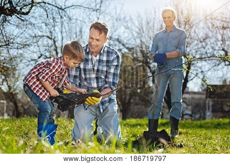 Real men work. Happy grandfather standing with a shovel behind and glazing at his grandkid and son planting an apple tree