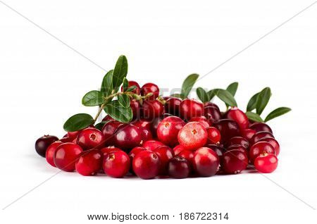 Bunch of fresh cranberries isolated on white.