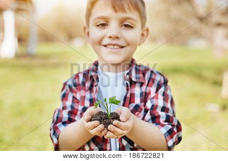 Planting time. Adorable school child grinning broadly while holding a fresh young sprout and looking into the camera