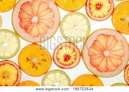 Mix Of Fresh Transparent Citrus Fruits On White