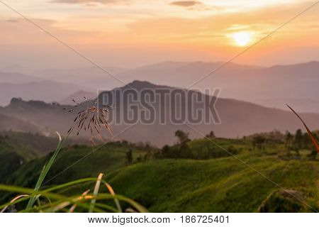 Beautiful landscape nature on mountain with sun cloud fog and bright colors of sky and sunlight during sunset in winter at view point Phu Chi Fa Forest Park in Chiang Rai Province Thailand