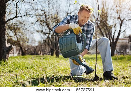 Caring about environment. Smiling mature standing on one knee and pouring a newly planted tree with a green watering can in his garden