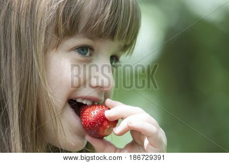 Beautiful Little Girl Eating A Juicy Red Strawberry