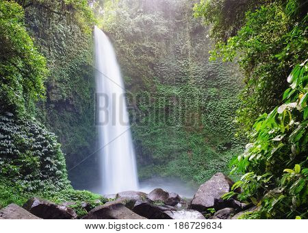 Huge fast waterfall hidden in mountain forest under great sky in deep jungle forest with bright green foliage, outdoor nature landscape, Bali island, Indonesia