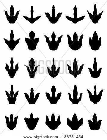 Black footprints of dinosaurs on a white background