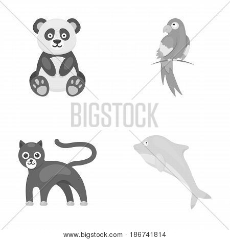 Panda.popugay, panther, dolphin.Animal set collection icons in monochrome style vector symbol stock illustration .