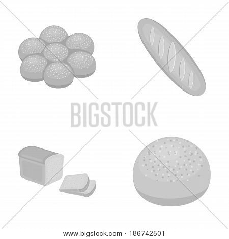 Cut loaf, bread roll with powder, half of bread, baking.Bread set collection icons in monochrome style vector symbol stock illustration .