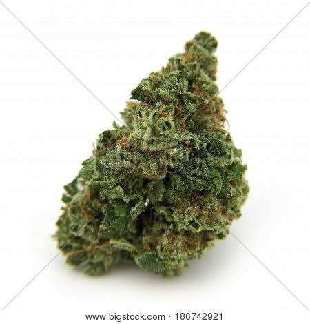 Dried cannabis flower Romulan Strain isolated on white backdrop