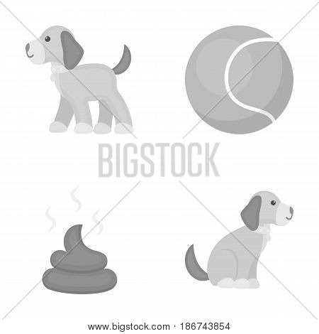 Dog sitting, dog standing, tennis ball, feces. Dog set collection icons in monochrome style vector symbol stock illustration .