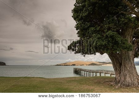 Bay of Islands New Zealand - March 7 2017: Exit to Tasman Sea from Hokianga Harbour shows large dune pier large tree all under heavy cloudscape because of approaching cyclone.