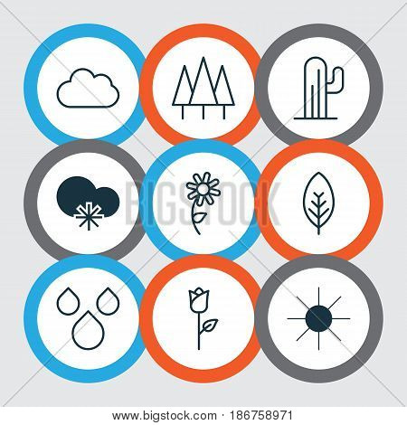 Set Of 9 World Icons. Includes Tree Leaf, Forest, Sunshine And Other Symbols. Beautiful Design Elements.