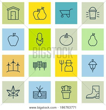Set Of 16 Agriculture Icons. Includes Grower, Lantern, Radish And Other Symbols. Beautiful Design Elements.