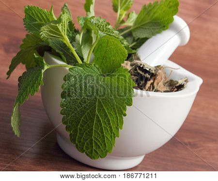 Green And Dried Lemon Balm In Mortar, Concept Of Herbalism And Alternative Medicine