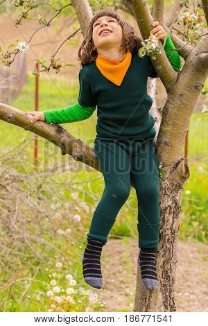 Little boy climbing in the tree looking up and smiling