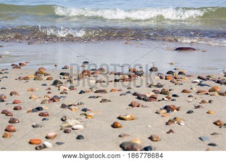 Small rocks scattered on beach sand close up.Shallow depth of field.Selective focus on foreground rocks.Blurred background of multicolor stones of different shapes and sizes, ocean waves, overcast sky
