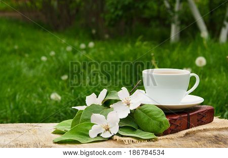 A cup of black tea a book and a branch of a blossoming apple tree. Apple blossom and fragrant tea.