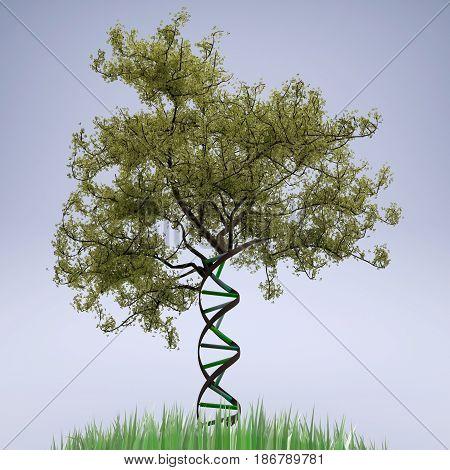 dna shaped tree trunk , 3d illustration