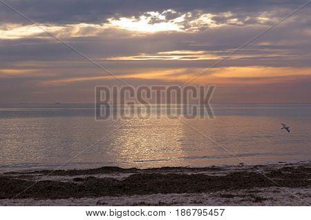 Semaphore beach South Australia sunlight sunset light sunset