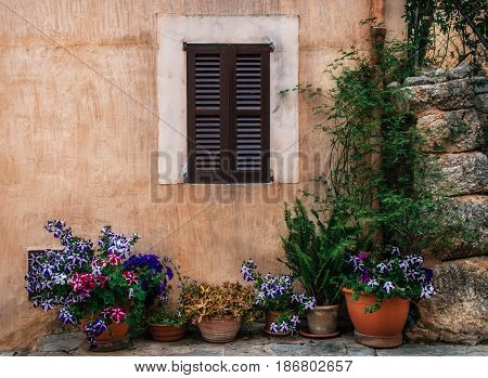 Row of ceramic pots with colored flowers on a stone wall with shuttered window background. Old part of Pollensa on the stairway Via Crucis Mallorca Spain