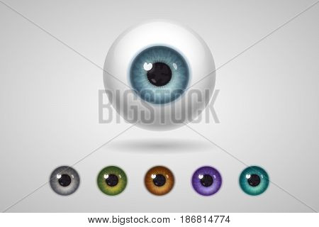 Eyeball and colored irises of natural and unnatural colors