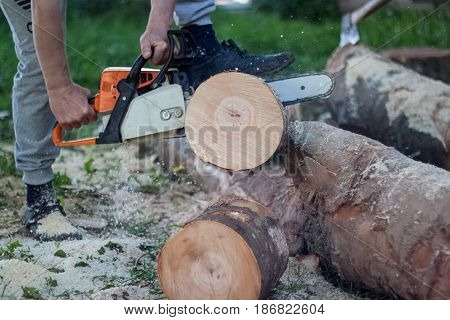 Woodman Cuts Boulder With A Chainsaw, Firewood, Felling Of Trees, Chainsaw