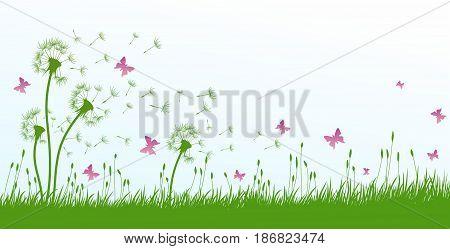 Flowers dandelion field with a flock of butterflies.