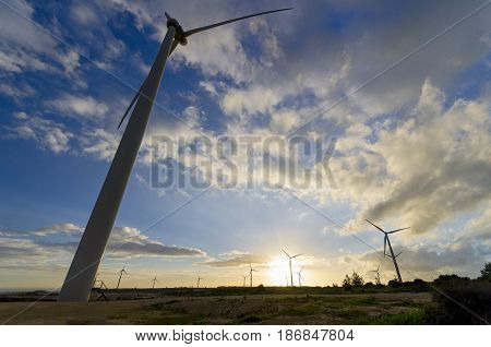 A wide angle shot of wind turbines during sunset