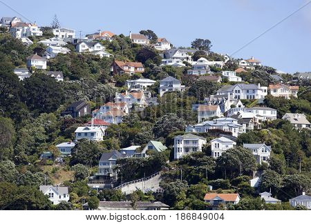 Houses of Wadestown the nothern suburb of Wellington city (New Zealand).