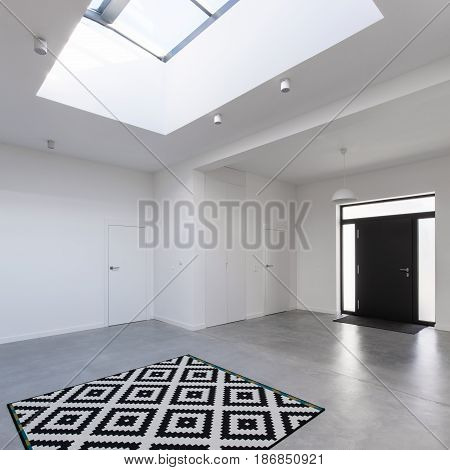 Contemporary Front Hall With Skylight