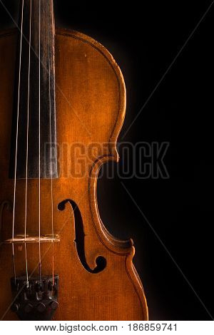 Violin music classic string isolated wood orchestra