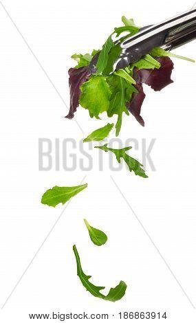 Salad leaves food leafy vegetables ingredients leaf isolated on white