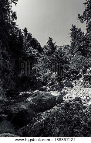 Samaria Gorge. Crete. Greece. Black and white.
