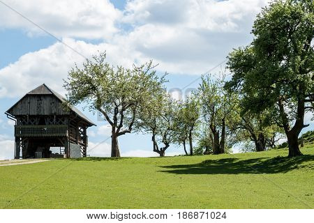 farmland with green field old barn and garden trees