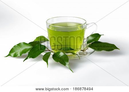 Tea cup glass leaves isolated on white chinese tea green tea