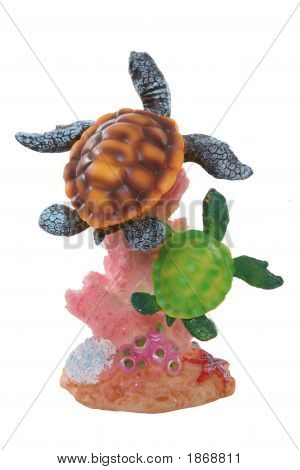 Colorful Turtles