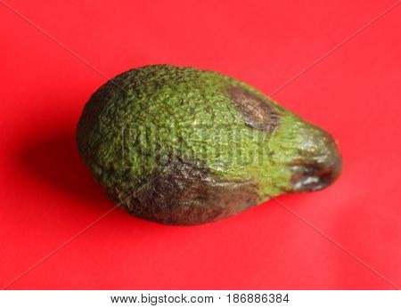 Mouldy avocado/ This avocado is spoiled and old.