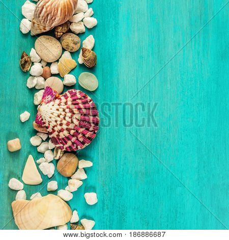 A square overhead photo of sea shells and pebbles on a vibrant turquoise background texture with plenty of copy space