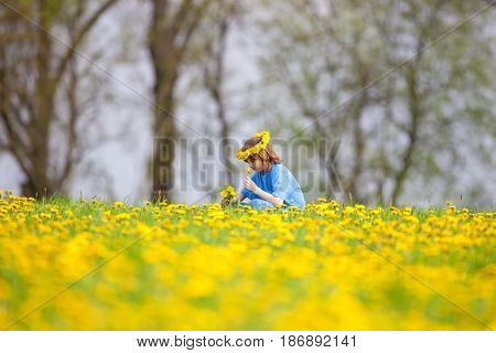 Boy with Blond Hair Picking Dandelions on a Meadow