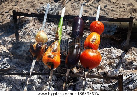 Grilled Vegetable Shish Kebab With Tomato, Paprika, Onion, Eggplant And Hot Pepper