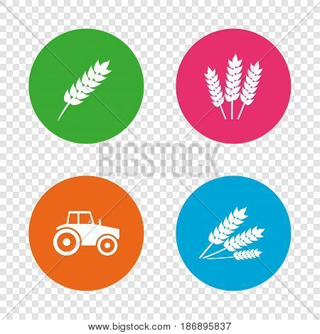 Agricultural icons. Wheat corn or Gluten free signs symbols. Tractor machinery. Round buttons on transparent background. Vector