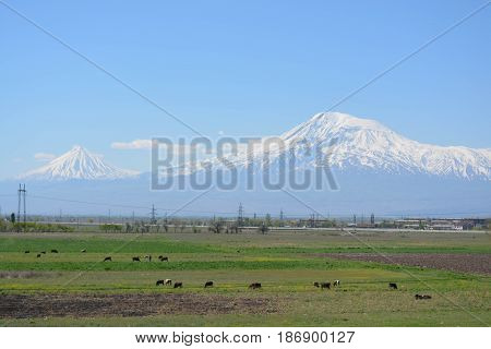 Armenian landscape, mountains, nature, blue sky, green