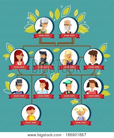 Family tree generation, illustratuion people faces, icons infographic avatars in flat style. Cartoon vector portrait of family. Pedigree. Picture of the genealogical family tree in white background