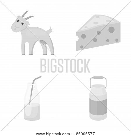 Goat, a piece of cheese and other products. Milk set collection icons in monochrome style vector symbol stock illustration .