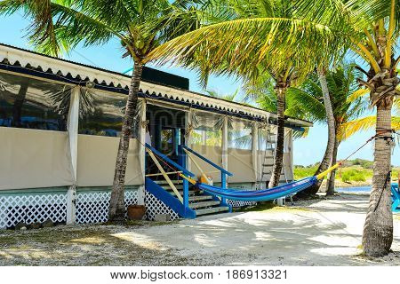 Caribbean beach bar and palms on Tortola, BVI