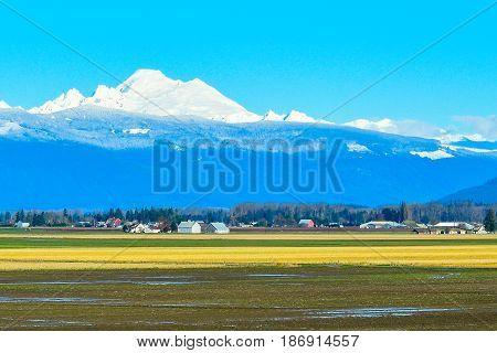 Mount Baker taken from Skagit Valley WA
