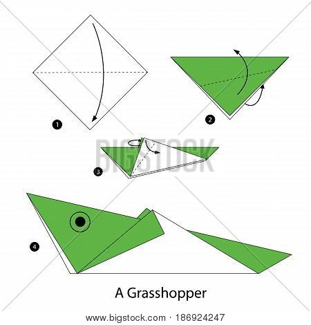 step by step instructions how to make origami a Grasshopper.