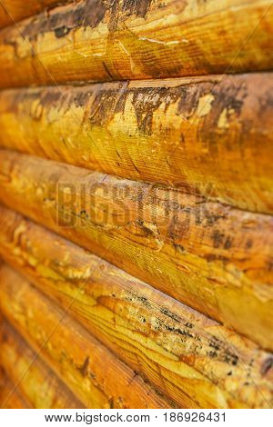 Macro of used plank house in a line