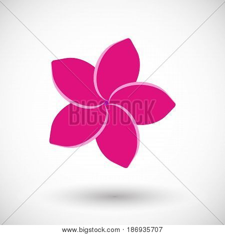 Frangipani icon Flat design of plumeria flower with round shadow vector illustration
