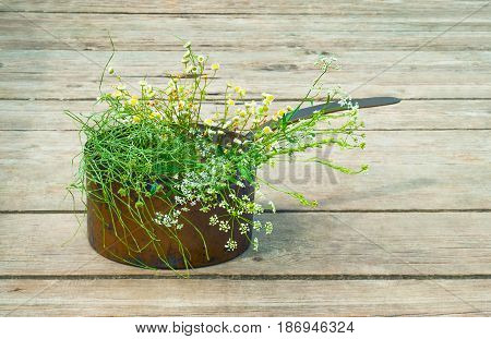 Wild Flowers In A Old Copper Pot