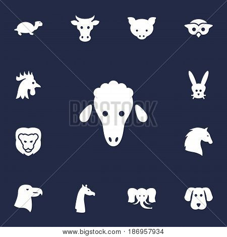 Set Of 13 Brute Icons Set.Collection Of Bunny, Tortoise, Lamb And Other Elements.